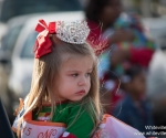 christmasparade2015-25
