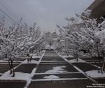 snow_0408
