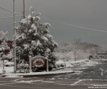 snow_0397