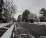 snow_0423